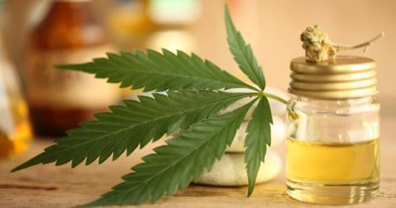 The Benefits Of CBD For Your Body